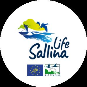 Life Sallina