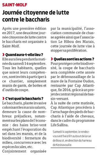 Presse Ocean - Journée citoyenne lutte contre le Baccharis Saint-Molf