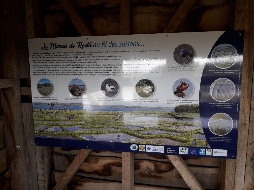 La vie du marais de Rostu racontée sur des panneaux dans l'observatoire de Kervarin (Mesquer)
