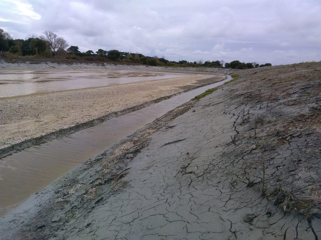 Octobre: reprise des travaux dans le marais de Millac