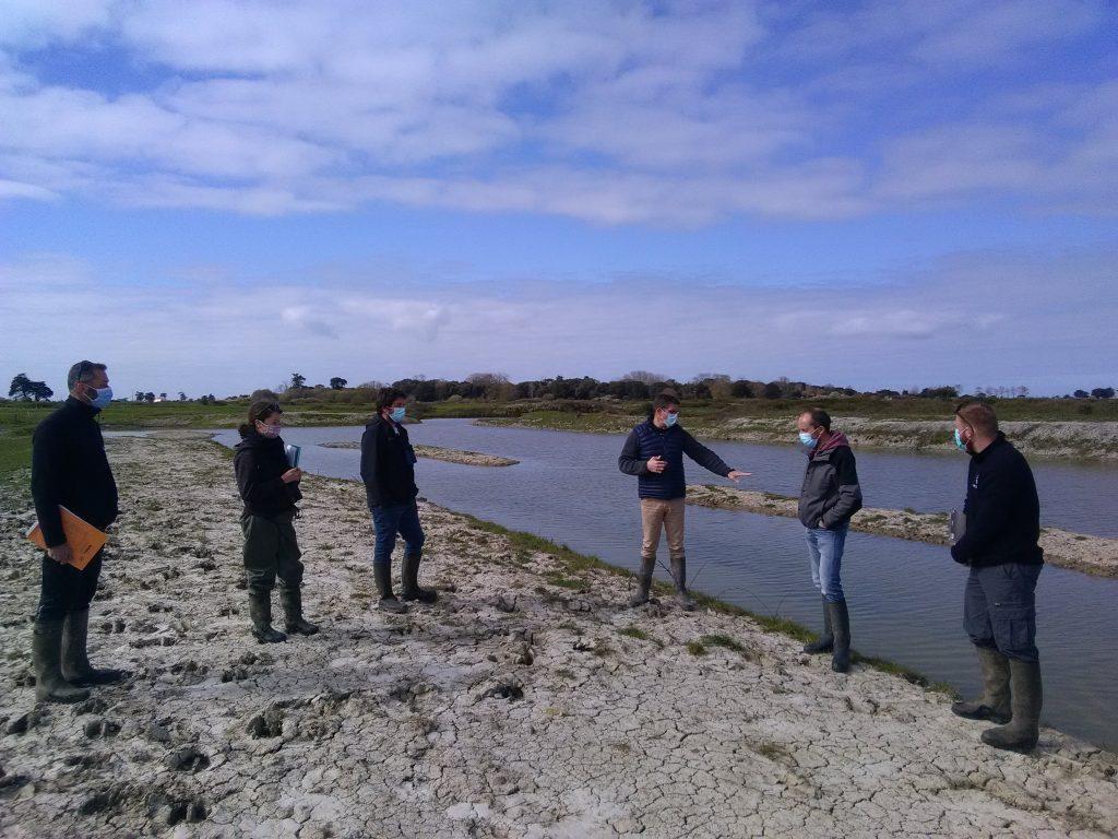 Préparation des actions 2021 sur le marais de Millac
